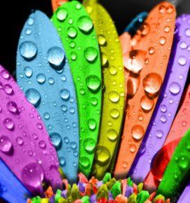 Colorpuntura y Cromopuntura